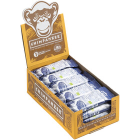Chimpanzee Organic Protein Bar Box 25x45g, Dates & Vanilla (Vegan)